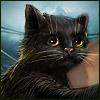 Města duchů: Ultharské kočky - Sběratelská edice